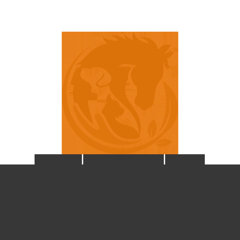 business logo copy111111
